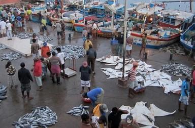 Até para vender o seu peixe, você precisa conhecer os cantos do mercado.